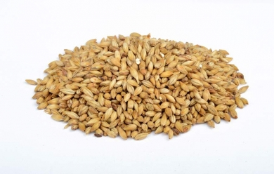 Amber 41-49 EBC 1kg Brewferm