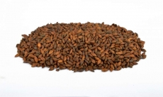 Chocolate 800-1000 EBC 25kg Brewferm