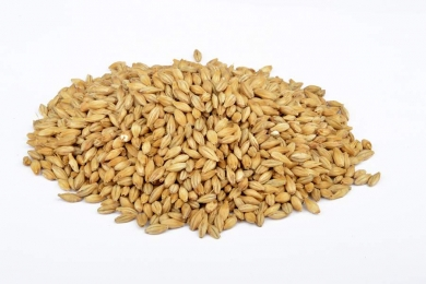Pils 3-3.5 EBC 1kg Brewferm