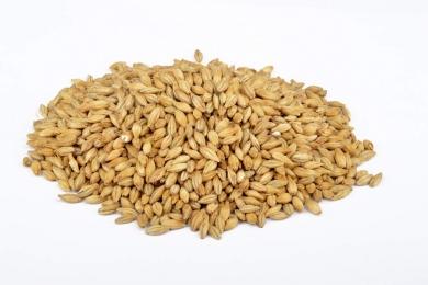 Pils 3-3,5 EBC 25kg Brewferm