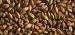 Brown Malt 430-600 EBC 25kg Simpsons
