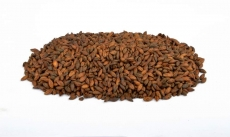 Chocolate Wheat 900-1200 EBC 1kg Weyermann